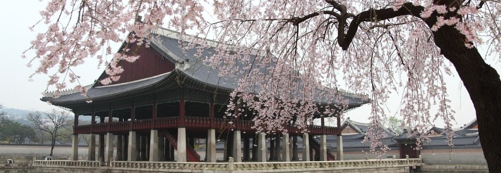 Best of South Korea small group tour